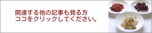 関連記事バナー500